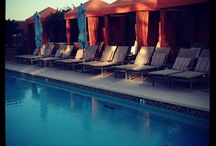 InstaSnap! / Dedicated to our guests who post on Instagram / by Four Seasons Hotel Silicon Valley at East Palo Alto