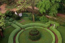 Formal Garden Beauty / by Kat White