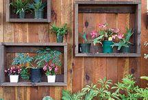 Outdoors / by Jenny Singleton