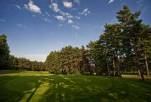 Longcross Golf Course / The Longcross is widely considered the very best example of a typical tree-lined Surrey course. It winds through Scots pine, beech and silver birch trees and is very reminiscent of Sunningdale's Old Course in places. / by Foxhills Hotel and Resort