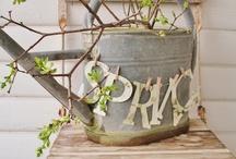 """""""Spring Forward"""" / by Beth Ellsmere"""