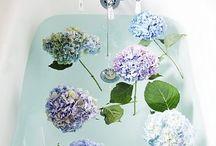 Bath / by BBW Heartland