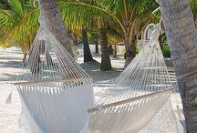 Ambergris Caye, Belize / by Betsy Davis