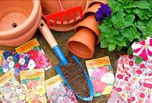 garden club / crafts, articles, and tips to share with the garden club  / by Amy Kress