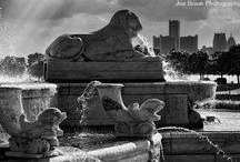 Detroit Belle Isle / by Pure Detroit