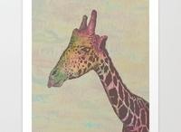 Giraffes / by Ivy Vine