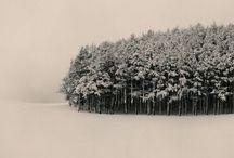 winter / by Miłka Kowalska