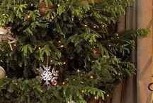 Christmas!!! / by Monika Springmann Bechara