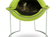 Cat Fancy / All about cat stuff! For my fur babies! / by Amanda G