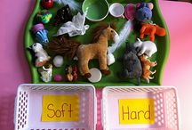 Learning - Sensory and Fine Motor Skills / by *** Briali ***
