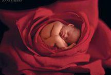 Babies / by Gayle Bryan
