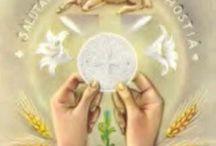 Come Home To The Catholic Church / Roman Catholic Church / by Deanna Wilhelm