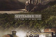 Harry Potter / by Rachel Hammon