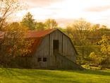 barns / by Tina Davis
