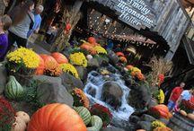 Mountain Wonders / Gatlinburg, TN Area / by Holiday Inn Club Vacations®