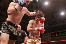 Kickboxing / by Fightmag.net