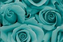 Tiffany Blue  / Tiffany Blue and all things related to that perfect little blue box  / by Tara Jones