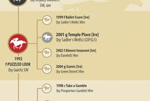 Infographics / A fun way to learn more about the Thoroughbred industry. / by The Blood-Horse