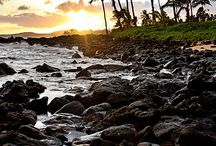Kauai, My Love / by Susanne Dean