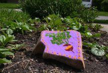 Yard and Garden / by froggymama