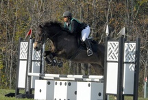 Equestrian - Jumps / by Therese Jönsson