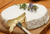 All about cheese / by Michelle Marshall