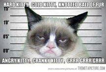 Hahahahaha so true.  / by Sam Mondary