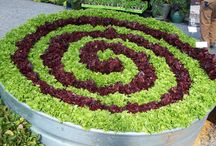 VEGETABLES, FRUIT,  & FLOWERS IDEAS / by SHER