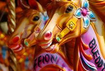 Horses / by Amanda Tonar