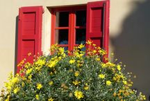 Windows and Doors of Italy / Windows and Doors in Italy, Tuscany, Cinque Terre, Amalfi Coast, Florence, Venice, Rome and beyond...they evoke memories, inspire with colors, flowers and sometimes a bit of mystery. / by ClassicVacationRental.com