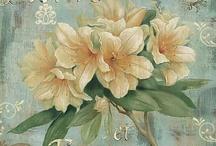 Illustrations_Flowers / by Carmen Torres