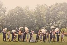 Wedding Ideas / by Meg Hutchings