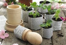 Home - Outdoors and Garden / by Christina Yamasaki