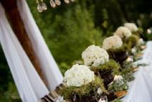 Barbara / by MyItalian Wedding