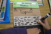 Science - 3rd Grade / by Stephanie Krahn