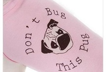 Pugs Not Drugs / Pug-related clothing, signs & doodads. / by Stephanie Ward