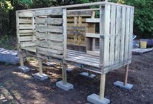 chicken coops and farm stuff / by Angela Jensen