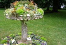 Garden ideas / by Brandi Whitaker Kreutzer