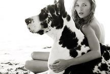Black and Whites with Pets / by MOXIEatx
