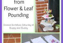 Spring activities for preschool  / by Melissa Moore Gibbs