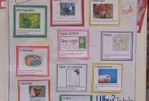 Classroom Ideas / by Stacey Peterson