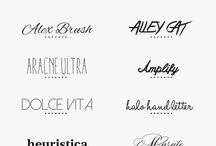 Typography / by Megan Bitting