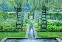 Landscape Design / by Dexigner