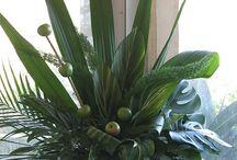 Floral Arrangements / by Hira George