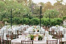 Wedding Planning / by Allison Yoon