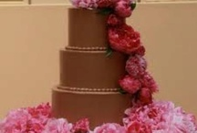 Cakes  / by erin love