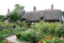 Cottage Garden / by Tara Bennett