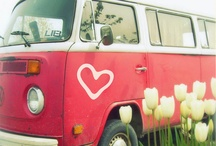 VW CAMPER! / by Northernparadise