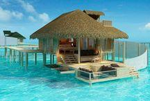 Maldives  / by Sherry Garland