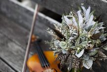 violin / by Anna Mackenzie